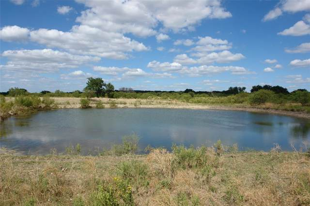 TBD County Road 193, Goldthwaite, TX 76844 (MLS #14196830) :: Vibrant Real Estate