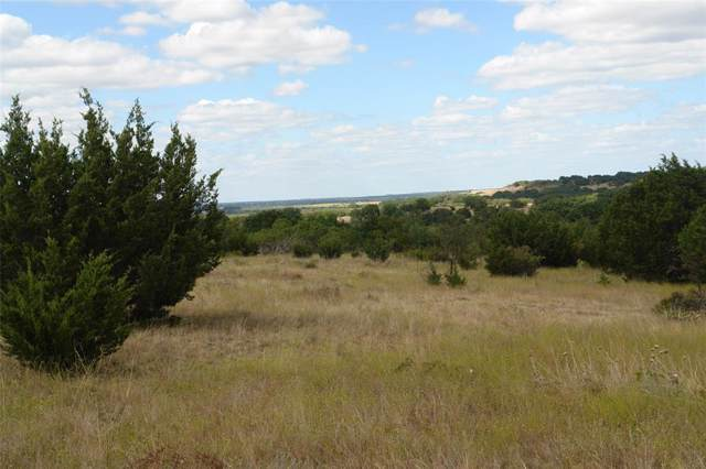 TBD Fm 218, Goldthwaite, TX 76844 (MLS #14197791) :: RE/MAX Town & Country