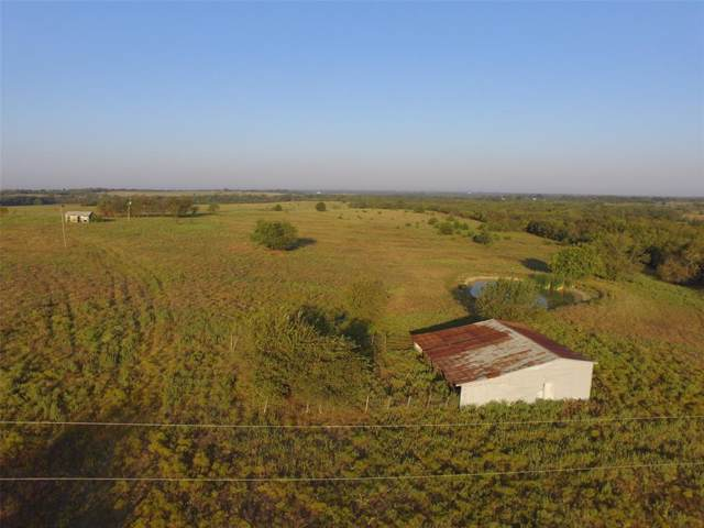 5634 County Road 1094, Celeste, TX 75423 (MLS #14198452) :: The Kimberly Davis Group