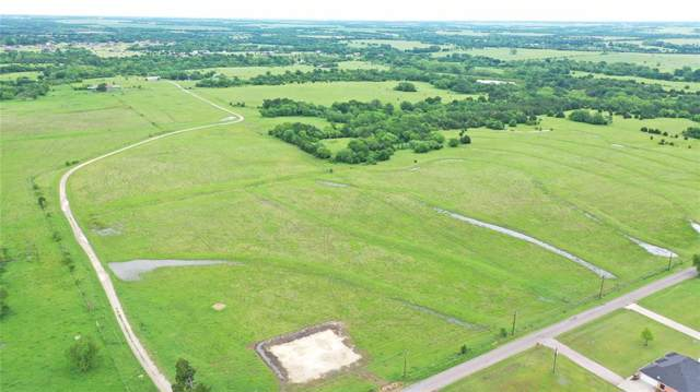 1455 Bledsoe Road, Gunter, TX 75058 (MLS #14198578) :: Lynn Wilson with Keller Williams DFW/Southlake