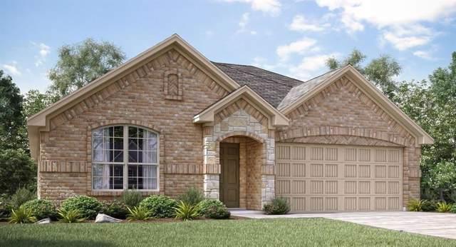 1300 Renoir Drive, Little Elm, TX 75068 (MLS #14199197) :: The Real Estate Station