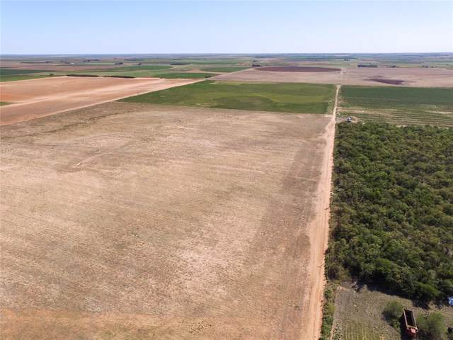 535 County Road 186, Rochester, TX 79544 (MLS #14200031) :: The Kimberly Davis Group