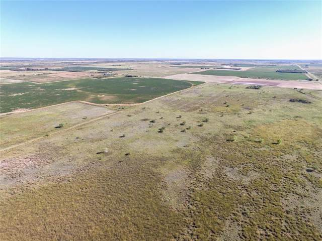 000 Fm 2407, Rule, TX 79547 (MLS #14200051) :: The Kimberly Davis Group