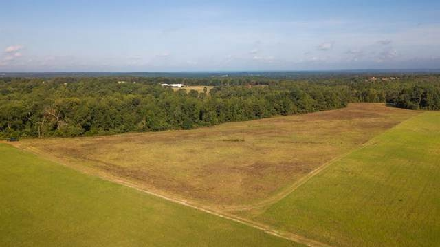 TBD County Road 3138, Tyler, TX 75706 (MLS #14200547) :: Vibrant Real Estate