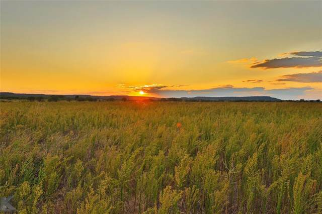 1 Buffalo Trail, Tuscola, TX 79562 (MLS #14200584) :: The Good Home Team