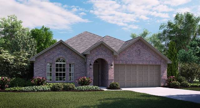1365 Lake Grove Drive, Little Elm, TX 75068 (MLS #14202191) :: The Real Estate Station