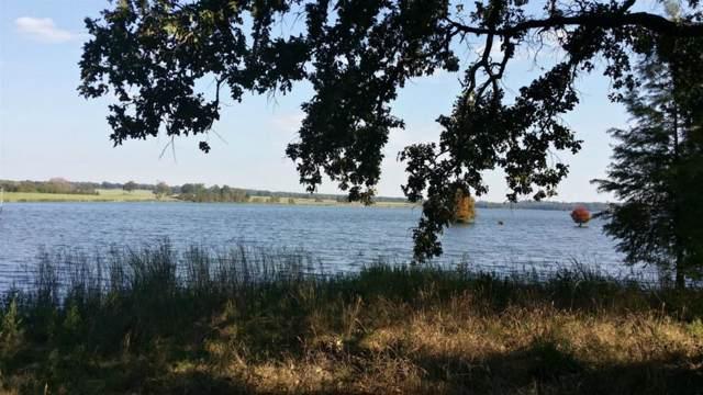224 Wildlife Way, Athens, TX 75752 (MLS #14202268) :: Lynn Wilson with Keller Williams DFW/Southlake