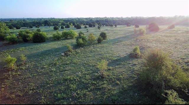 7097 Us Highway 69 S, Lone Oak, TX 75453 (MLS #14202604) :: Lynn Wilson with Keller Williams DFW/Southlake