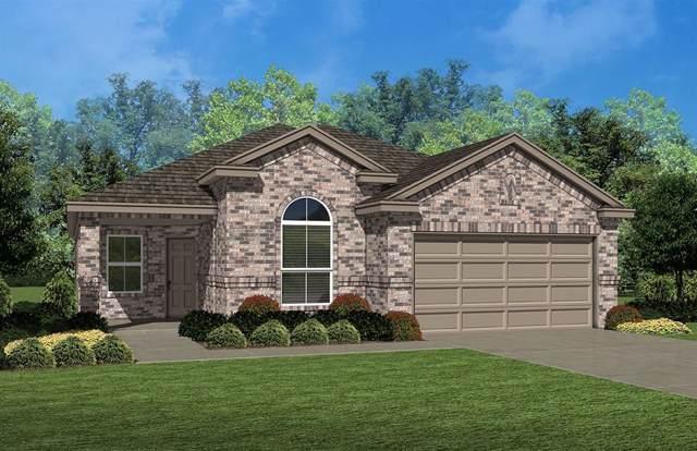 812 Doe Meadow Drive, Fort Worth, TX 76028 (MLS #14202646) :: Kimberly Davis & Associates
