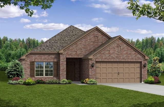 1928 Steppe Trail Drive, Aubrey, TX 76227 (MLS #14202807) :: Real Estate By Design