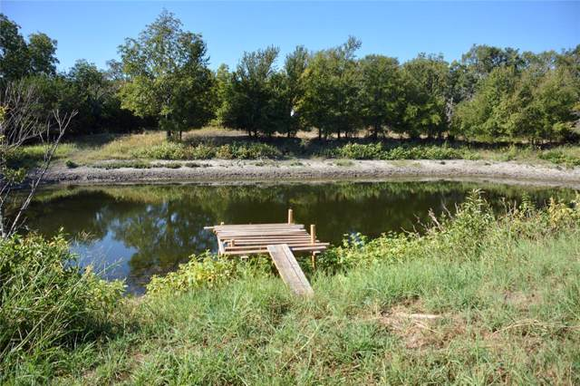 389 County Road 250, Goldthwaite, TX 76844 (MLS #14204330) :: The Hornburg Real Estate Group
