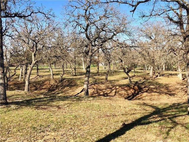 121 Silver Saddle Circle, Weatherford, TX 76087 (MLS #14204420) :: RE/MAX Town & Country
