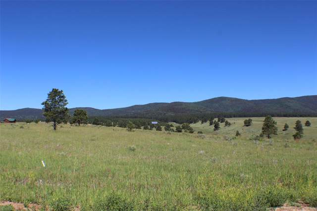 TBA Elk Mountain, Angel Fire, NM 87110 (MLS #14204855) :: Lynn Wilson with Keller Williams DFW/Southlake
