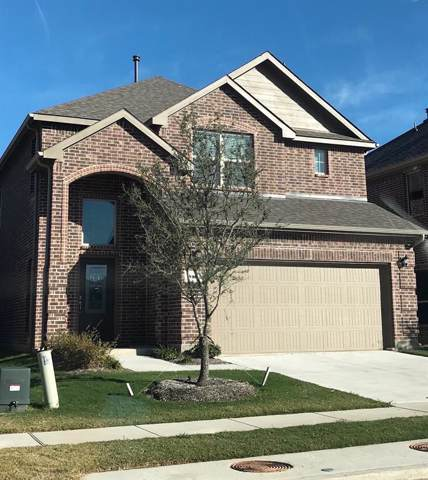 816 Gray Fox Drive, Mckinney, TX 75071 (MLS #14205614) :: Tenesha Lusk Realty Group