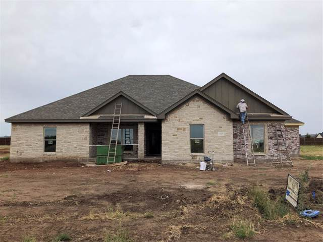 133 El Camino Court, Abilene, TX 79602 (MLS #14205725) :: The Chad Smith Team