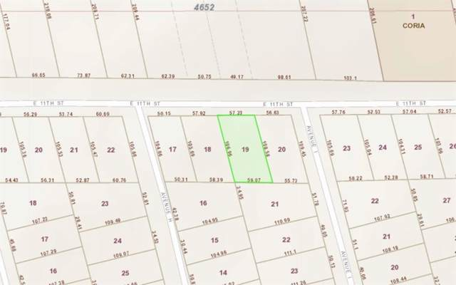 2410 E 11th Street, Dallas, TX 75203 (MLS #14206003) :: Lynn Wilson with Keller Williams DFW/Southlake