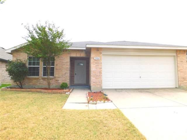 2904 Paddock Way, Denton, TX 76210 (MLS #14206087) :: Team Hodnett