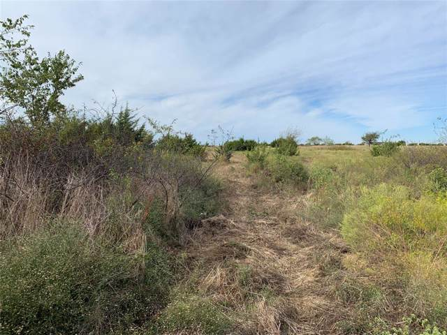 Lot 3 West Trail Lane, Cleburne, TX 76033 (MLS #14206440) :: The Welch Team
