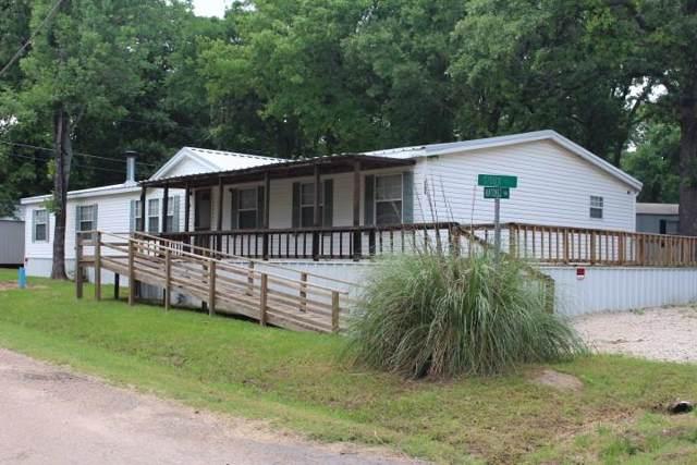 151 Natchez Trail, Mabank, TX 75156 (MLS #14206544) :: HergGroup Dallas-Fort Worth