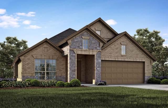 1810 Sunflower Drive, Glenn Heights, TX 75154 (MLS #14207982) :: Roberts Real Estate Group