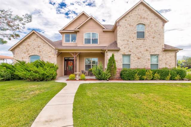 480 Dillingham Lane, Weatherford, TX 76085 (MLS #14208228) :: RE/MAX Town & Country