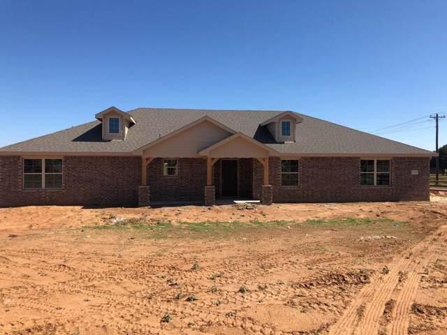 251 Springwood Ranch Loop, Springtown, TX 76082 (MLS #14208368) :: Lynn Wilson with Keller Williams DFW/Southlake