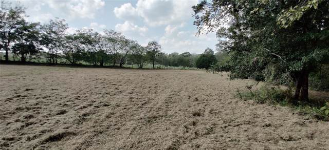TBD County Road 2290, Arp, TX 75750 (MLS #14208861) :: RE/MAX Town & Country