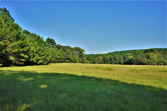 310 County Road 2443, Rusk, TX 75785 (MLS #14210441) :: RE/MAX Town & Country