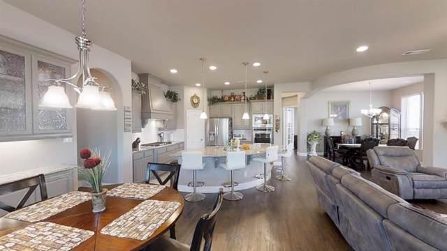 6317 Teresa Lane, Rowlett, TX 75089 (MLS #14210953) :: Van Poole Properties Group