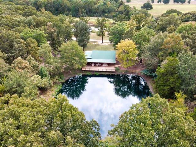 TBD County Road 16800, Pattonville, TX 75468 (MLS #14211007) :: Lynn Wilson with Keller Williams DFW/Southlake