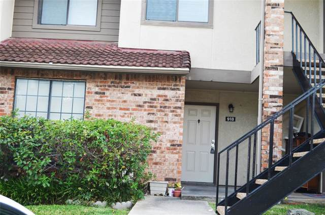 918 Turtle Cove #151, Irving, TX 75060 (MLS #14211060) :: Lynn Wilson with Keller Williams DFW/Southlake