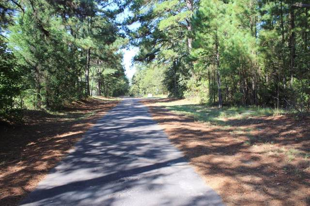 Lot 554 County Road 2150, Quitman, TX 75783 (MLS #14211445) :: The Chad Smith Team