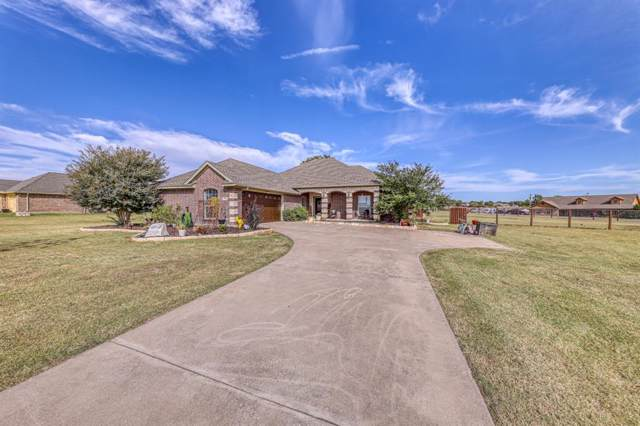 100 Tigers Eye Ct Court, Weatherford, TX 76087 (MLS #14211612) :: North Texas Team | RE/MAX Lifestyle Property