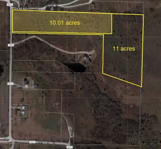 1250 County Road 4522, Decatur, TX 76234 (MLS #14212773) :: Robbins Real Estate Group