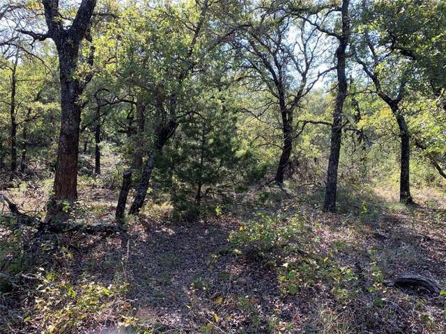 TBD 15 Live Oak Road, Santo, TX 76472 (MLS #14214296) :: Tenesha Lusk Realty Group
