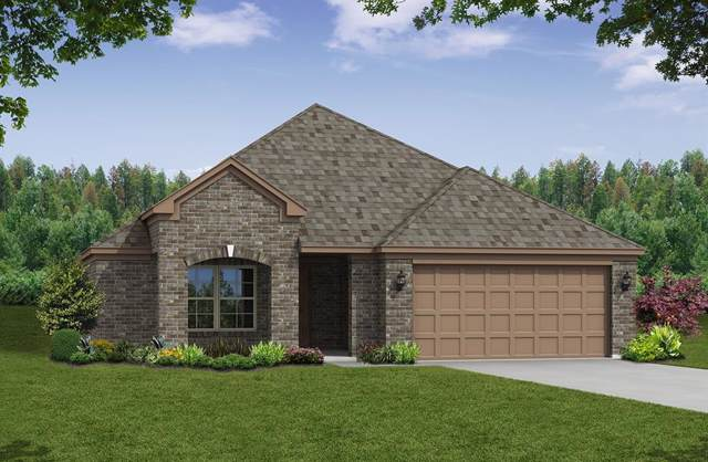 153 Ginger Lane, Hickory Creek, TX 75065 (MLS #14214568) :: All Cities Realty