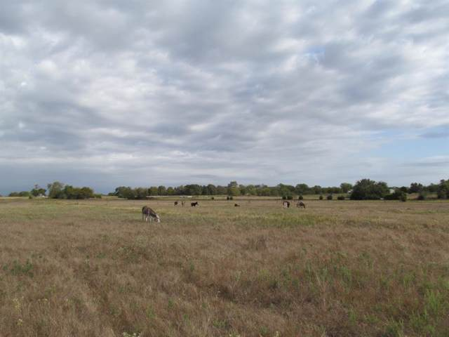 TBD Cr 4719, Cumby, TX 75433 (MLS #14214928) :: The Hornburg Real Estate Group