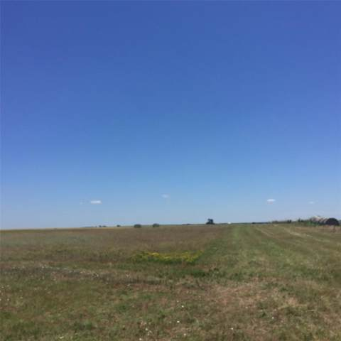 TBD Pecan Creek Trail, Valley View, TX 76272 (MLS #14214991) :: Bray Real Estate Group