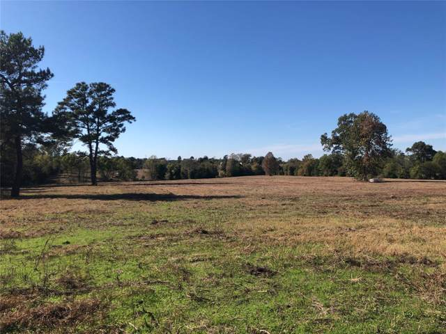 10971 Fm 1252, Winona, TX 75792 (MLS #14216558) :: The Real Estate Station