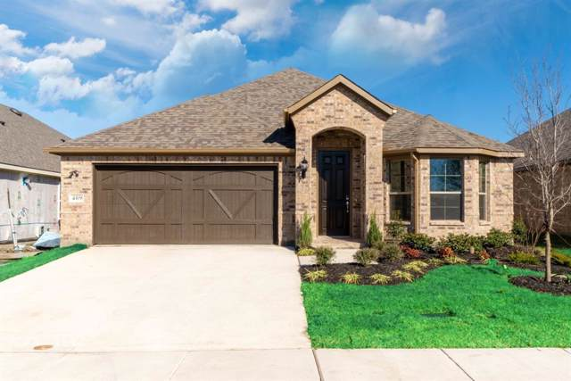 557 La Grange Drive, Rockwall, TX 75087 (MLS #14217114) :: RE/MAX Town & Country