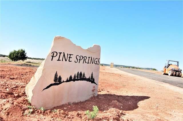 Lot 18 Pine Springs Cove, Tuscola, TX 79562 (MLS #14217424) :: The Daniel Team