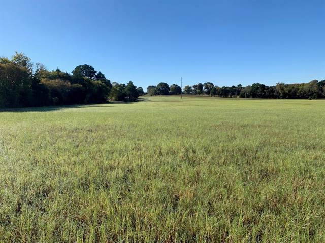 TBD Fm 1803, Murchison, TX 75778 (MLS #14217658) :: Lynn Wilson with Keller Williams DFW/Southlake