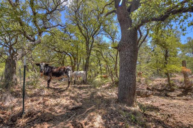 8725 L6 Hwy 377 S, Brookesmith, TX 76827 (MLS #14218284) :: The Good Home Team