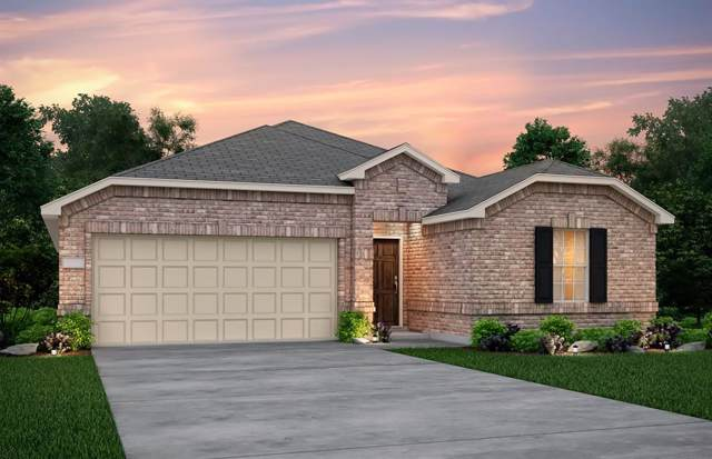 1005 Norias Drive, Forney, TX 75126 (MLS #14218568) :: RE/MAX Landmark