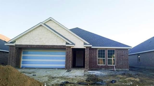 3209 Overlook Drive, Royse City, TX 75189 (MLS #14218577) :: Lynn Wilson with Keller Williams DFW/Southlake