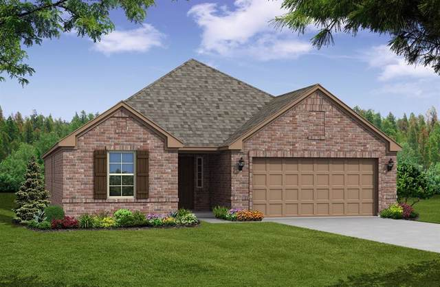 316 Wildhaven Drive, Fate, TX 75087 (MLS #14221138) :: RE/MAX Town & Country