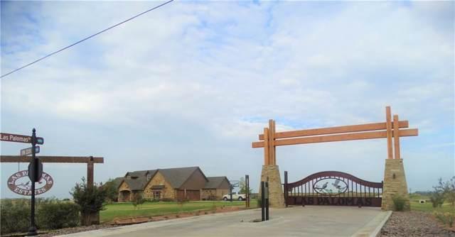 336 El Pescado Court, Godley, TX 76044 (MLS #14221437) :: Real Estate By Design