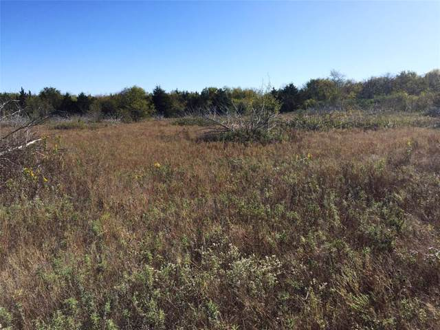 46+ AC Hwy 82, Bonham, TX 75418 (MLS #14221690) :: Baldree Home Team