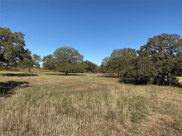Lot 1 Cool Junction Road, Millsap, TX 76066 (MLS #14223523) :: Ann Carr Real Estate