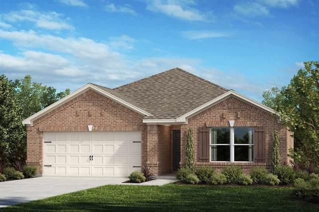 2729 Tobias Lane, Aubrey, TX 76227 (MLS #14223733) :: Real Estate By Design